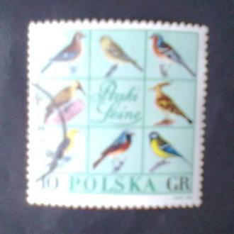 Польша 1966  г  Лесные птицы