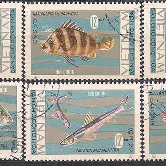Вьетнам, 1967 г., фауна, рыбы Вьетнама (местные)
