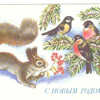 1991 Художник Р. Достян