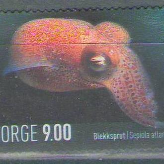 Норвегия 2004 каракатица