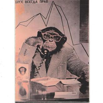 Календарик фотография 1991 Обезьяна