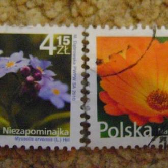 флора 2009р Польща