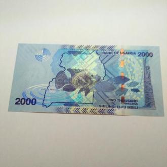 2000 шиллингов, 2015, Уганда, пресс, unc, оригинал