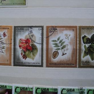 1975  Куба. Флора. . гаш.