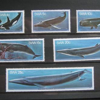 фауна киты  на т