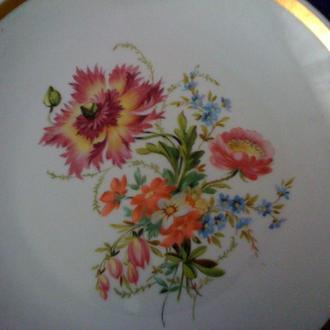 Старинная настенная фарфоровая тарелка Россия с  ручной росписью