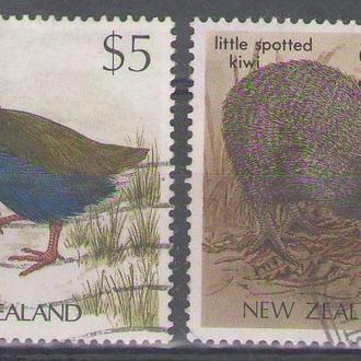 Новая Зеландия птицы