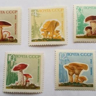 Грибы СССР 1964
