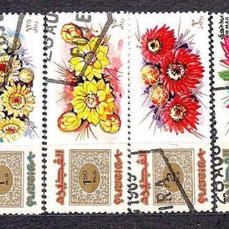 Фуджейра, 1969 г., флора, цветы