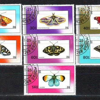 Монголия. 1992г. Бабочки