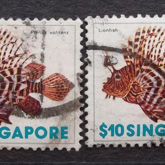 Сингапур 1977 г - Крылатка-зебра