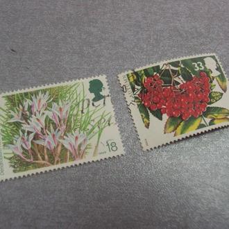 марки Великобритания 1993 осень калина флора цветы лот 2 шт №120