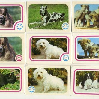 Карманные календарики Животные Собаки 9 шт. (№7)
