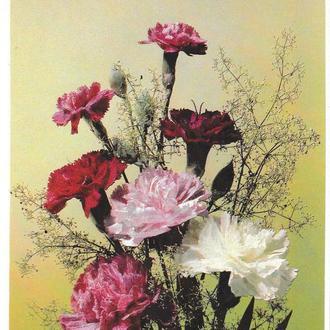 Открытка 1990 Цветы, Зі святом