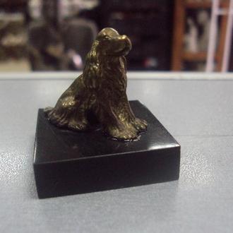 фигура бронза собака собачка кокер спаниель на подставке №53 (№743)