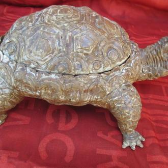 Черепаха шкатулка