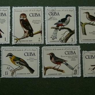 фауна экзотические птицы серия