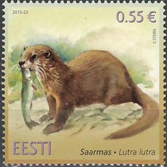 фауна Эстония-2015 выдра