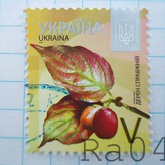 Марка почта Украина 2016 Дерен справжній Дерн наст