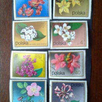 Польша 1972г Флора Цветы