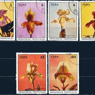 Куба. Цветы (серия без 1 м.) 1972 г.