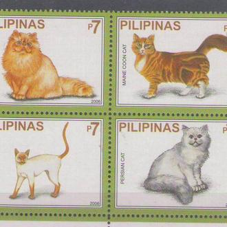Филиппины 2006 кошки
