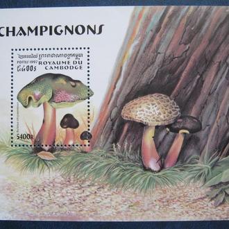 флора  растения  грибы камбоджа т