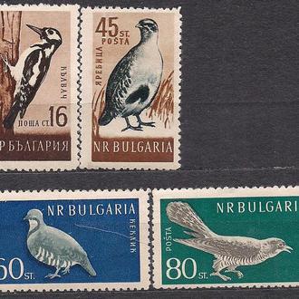 Болгария**, 1959 г., фауна, лесные птицы