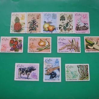 Куба 1969 Агрокультуры Овощи  * полн. серия