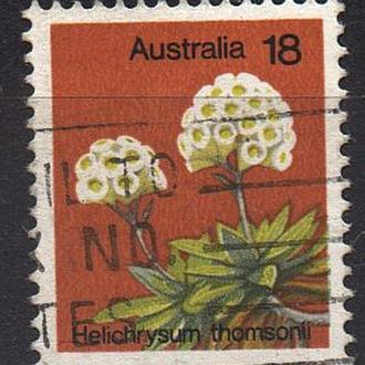 1975 - Австралия - Стандарт - Флора Mi.591