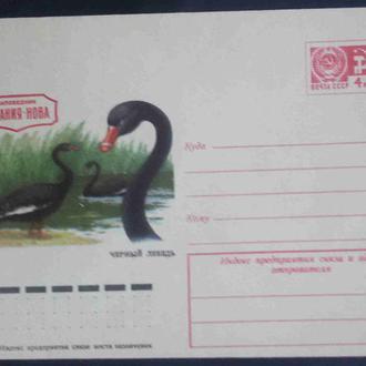 СССР 1975 ХМК* фауна птицы Аскания-Нова  Черный лебедь