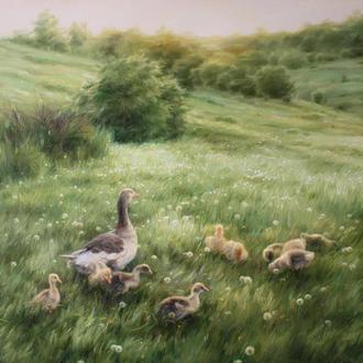 Семейство гусей