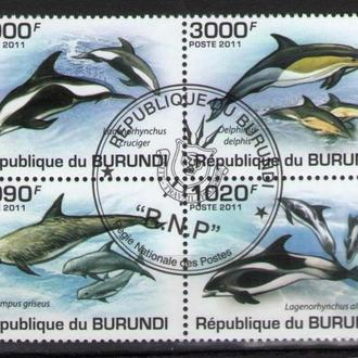 Бурунди 2011 Фауна морская Дельфины сцепка кварт 9,7 евро