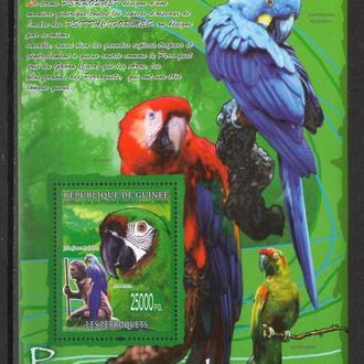 Гвинея 2008 ** Фауна Птицы Попугаи БЛ 10-00 евро MNH