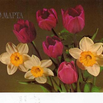 "открытка ""8 марта"""