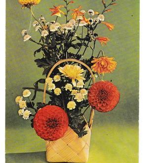 Открытка 1974 Цветы, Польша