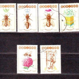 Польша. 1987г. Пчеловодство