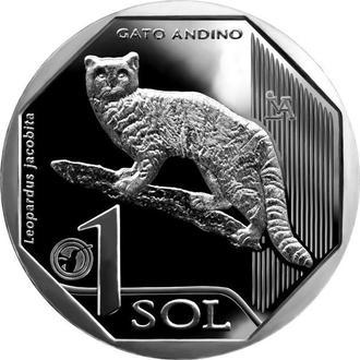 Shantaal,  Перу 1 соль 2019, Андский горный кот