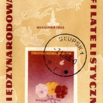 редкая марка блок 1955г польша
