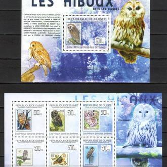Гвинея 2009 ** Фауна Птицы Совы БЛ+МЛ 22-00 евро MNH