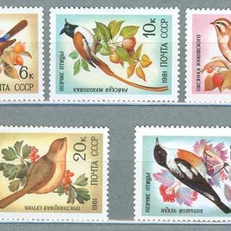 Марки СССР. Певчие птицы.Фауна.1981 год