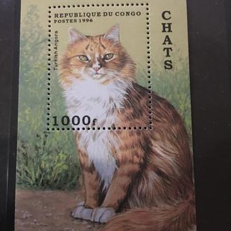 Конго 1996. Коты. MNH