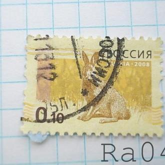 Марка почта Россия 2008 Заяц Фауна номинал 0,10