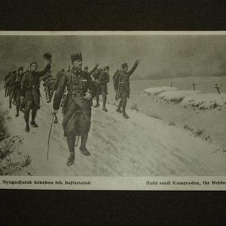 Старинная открытка - 3, Австро-Венгрия, 1-я Мировая война.