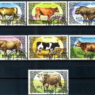 Монголия. Крупный рогатый скот (серия) 1985 г.