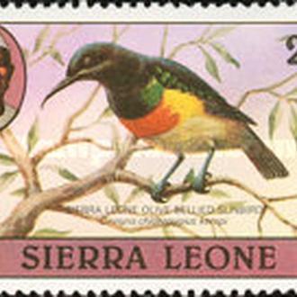 Сьерра Леоне 1980 Птицы (марка из серии)