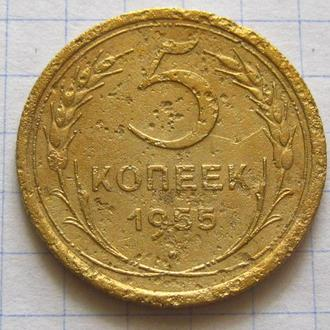 СССР_ 5 копеек 1955 года оригинал