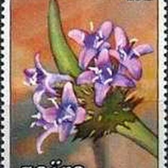 Заир 1984 цветы (марка из серии)