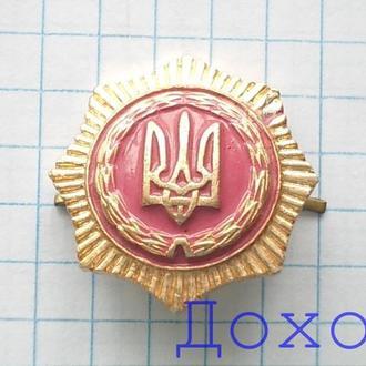 Эмблема родов войск МВС Украина герб №4