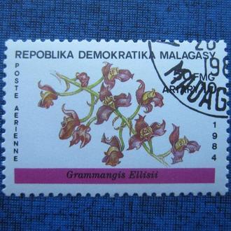 Марка Мадагаскар 1984 флора цветы гаш